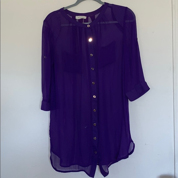 The Impeccable Pig Tops - 4/$25 The impeccable pig Sheer Button Up Blouse